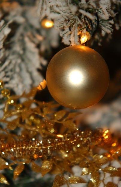 Photo of MONTEMURLO (PO): dicembre ricco di eventi