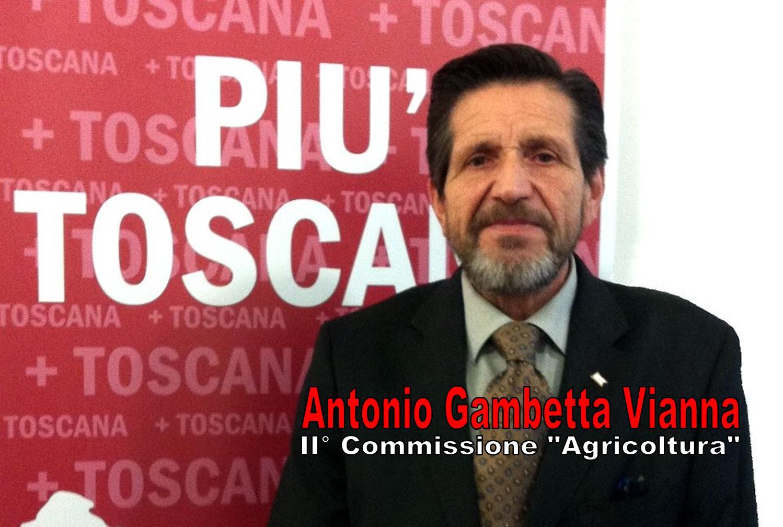 Photo of VIVAISMO – Gambetta Vianna (Più Toscana) esulta per la mozione approvata