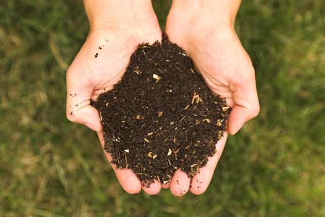 Photo of Dalle raccolte differenziate compost di prima qualità per i terreni agricoli