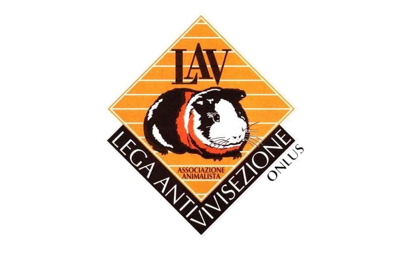 Photo of LAV – La Regione Toscana rinvia l'adeguamento dei canili