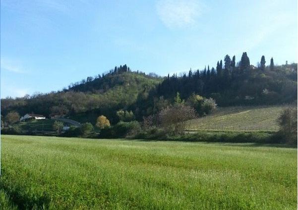 Photo of TURISMO – I tedeschi abbandonano la Toscana per l'Istria