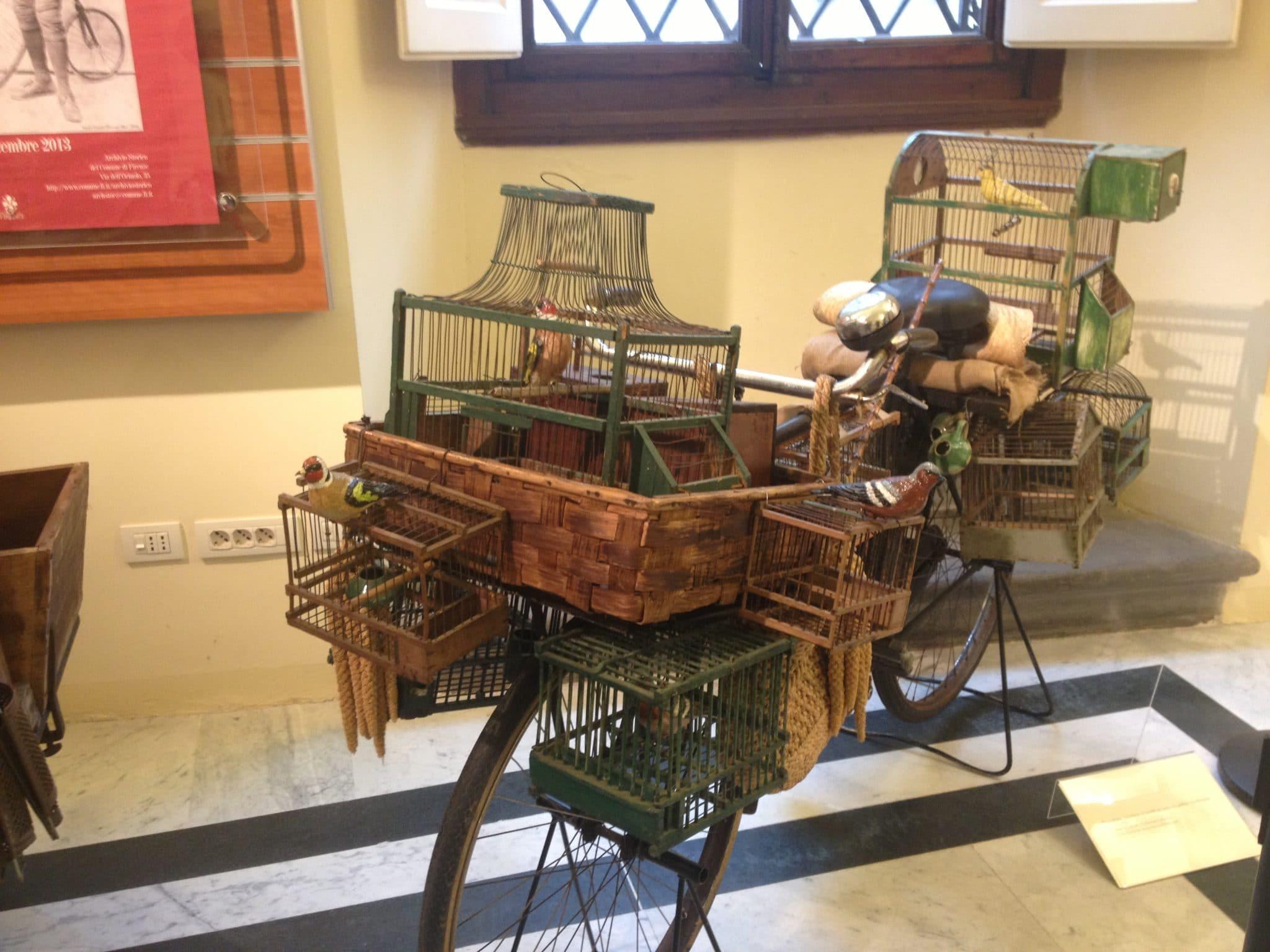 La bicicletta dell'uccellaio