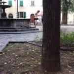 Santo Spirito: fa il bagno nudo nella fontana #4