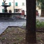 Santo Spirito: fa il bagno nudo nella fontana #3