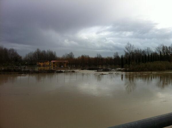 I Renai sotto l'acqua (foto tratta dal profilo twitter @francescacorner)