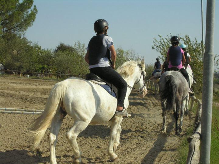 Photo of SIENA – Con Serena-mente imparare l'inglese a cavallo, si può