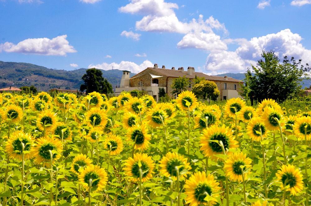 """Photo of """"Un'altra estate"""", dal 9 luglio al 16 settembre alla scoperta della Toscana slow"""