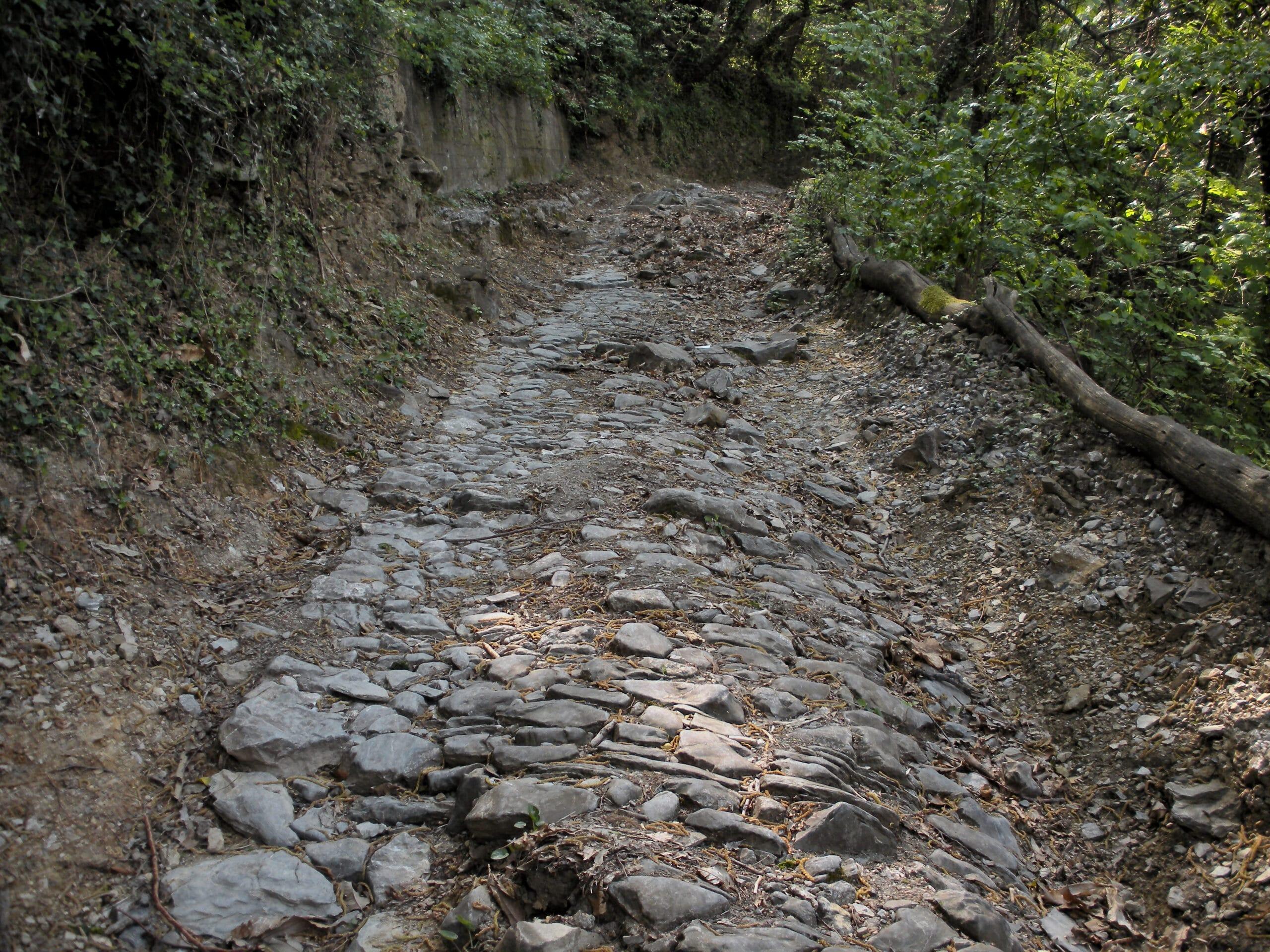 Photo of CAMPI BISENZIO – Contributi per danni da maltempo, entro il 30 settembre le domande