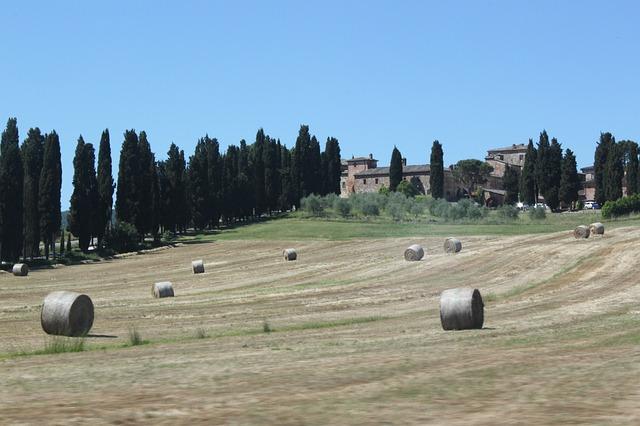 Photo of Toscana al secondo posto fra le mete invernali più gettonate dagli italiani secondo Confcommercio