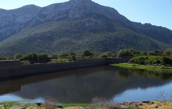 Photo of AGRICOLTURA – Una normativa 'sostenibile' sui laghetti collinari