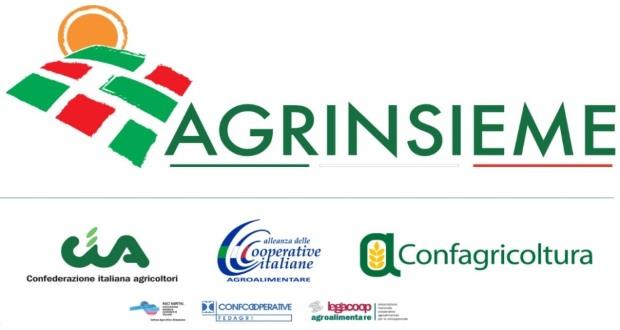 Photo of Agrinsieme incontra i canditati alle Politiche 2018.