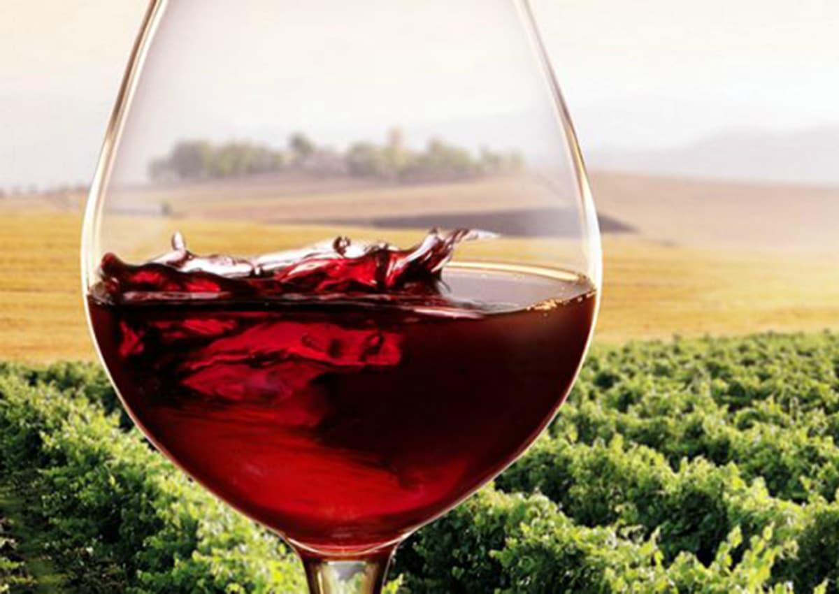 Photo of Vino toscano e Via della Seta, Coldiretti firma accordo con la provincia cinese di Guizhou