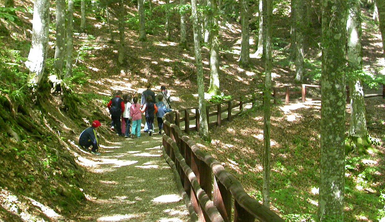 """Photo of """"Diversamente"""" nel Parco nazionale delle Foreste casentinesi.Un sabato e una domenica per tutti."""