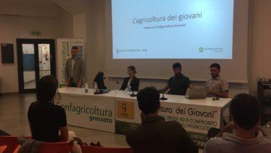 Photo of Diminuisce il numero delle imprese agricole under 40 in Toscana