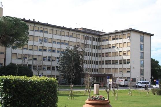 Photo of Centro trapianti di fegato di Pisa eccellenza nazionale