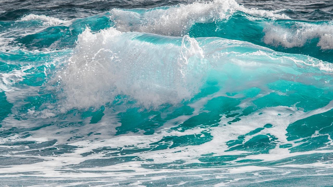 """Photo of Al via il progetto """"Arcipelago pulito"""" per la raccolta dei rifiuti in mare"""