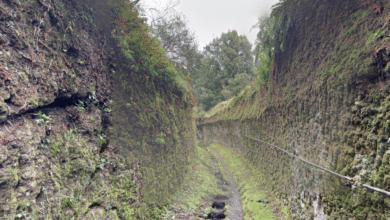 Photo of Amico Museo 2018, a Pitigliano visite guidate al Museo Alberto Manzi e trekking urbano