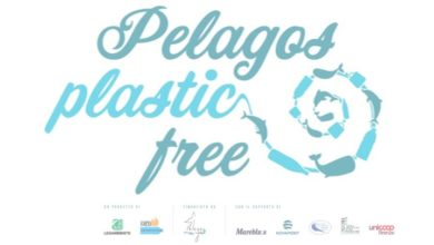Photo of Legambiente e Expédition MED presentano Pelagos plastic free
