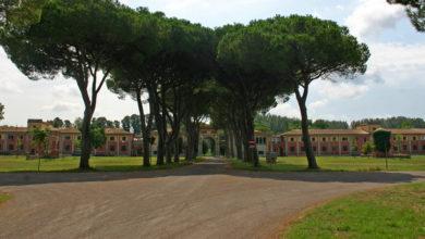 Photo of PISA – Funghi del Parco in mostra, sabato e domenica l'esposizione promossa dal Gruppo Micologico Pisano