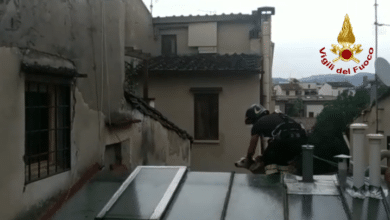 Photo of Soccorso cane bloccato su tetto in centro a Firenze – VIDEO