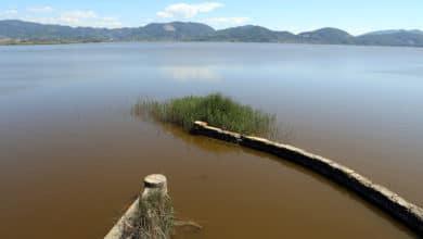 Photo of Disperso nel Lago di Massaciuccoli a causa del ribaltamento di una barca