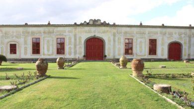 Photo of Paesaggi Di Vini, sette itinerari nel Montalbano sulle tracce di Bacco