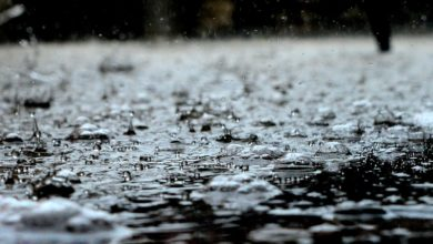 Photo of Pioggia e temporali, codice giallo fino alla mezzanotte di domani, martedì