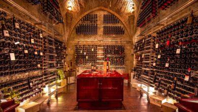 Photo of SIENA – Ristorante Sapordivino e Wine Cellar by Sapordivino