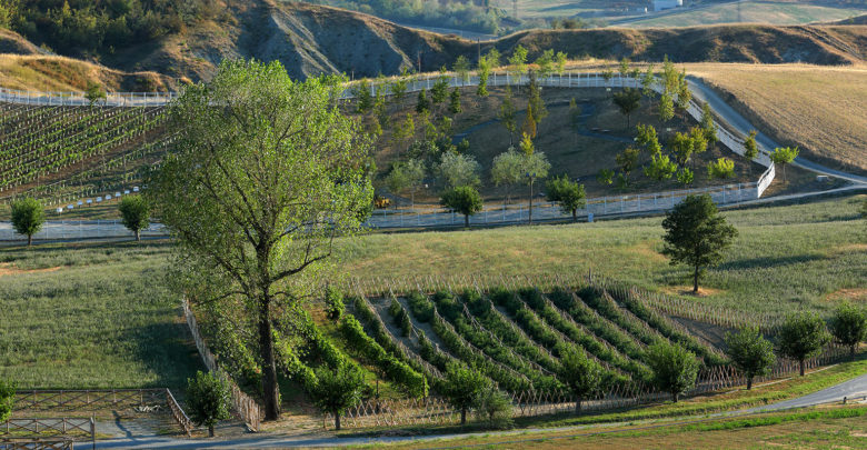Rural Festival Area di biodiversità agricola