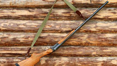 Photo of Detentori di armi: le novità del nuovo decreto legislativo