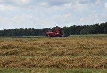 Photo of AMBIENTE – San Rossore la frontiera dell'agricoltura sostenibile