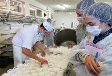 Photo of Fondazione ITS EAT presenta a Grosseto i corsi Gastronomo e Farmer 4.0