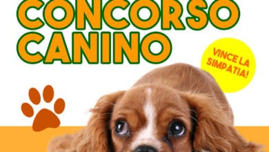 Photo of FIRENZE – Sabato 12 in programma concorso canino a Legnaia
