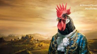 Photo of Gallo Nero, Re di Toscana: i riconoscimenti più alti della critica