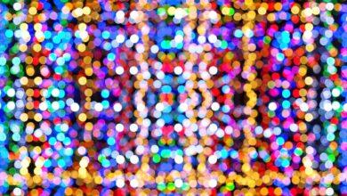 Photo of SIENA – Il 1 dicembre si accende lo spettacolo delle luci di Natale