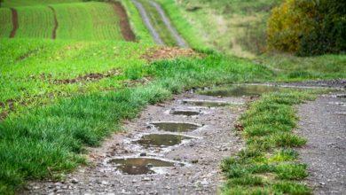 Photo of Maltempo, Confagricoltura: saltano le semine. Non unire ai danni meteorologici quelli della burocrazia