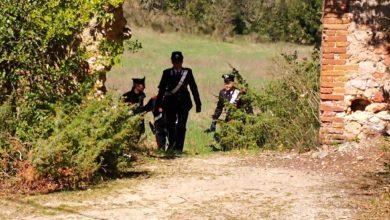 Photo of SIENA – Scoperto dai carabinieri nuovo caso di lavoro in nero nel settore agricolo