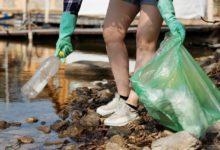 """Photo of LIVORNO – Volontari per l'ambiente: """"patrimonio inestimabile da valorizzare"""""""