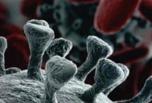 Photo of Aggiornamento Coronavirus Toscana oggi: 188 nuovi casi Covid-19, età media di 42 anni