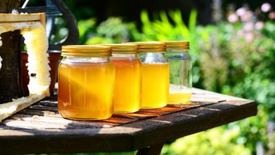 Photo of Confagricoltura, norme più stringenti su provenienza e origine del miele