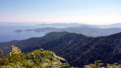 """Photo of Ecoballe nell'Arcipelago Toscano, il WWF chiede un intervento urgente e l'applicazione del principio """"chi inquina paga"""""""