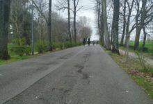 Photo of FIRENZE – Coronavirus, ordinanza sindaco Nardella: chiusi tutti i parchi cittadini