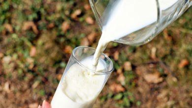 Photo of Coronavirus, Confagricoltura: lavorare uniti nella filiera latte e cogliere le opportunità del mercato