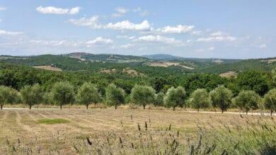 Photo of Viaggio in Toscana: tre mete alternative lontane dal turismo di massa
