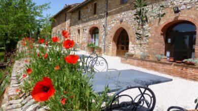 Photo of SIENA – Vendemmia Experience alla Fattoria del Colle