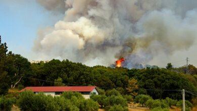 Photo of Toscana: dal 1 luglio scatta il divieto di abbruciamenti residui vegetali