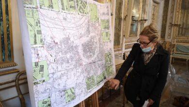 Photo of LUCCA –  1370 nuovi alberi saranno presto messi a dimora sulle Mura, vie e viali