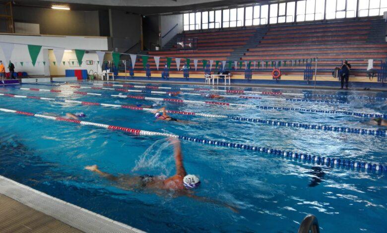 Maratona di nuoto 3
