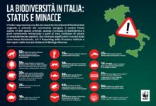 Photo of Biodiversità in Italia, WWF: Oltre la metà delle specie e l'89% degli habitat protetti da Direttive UE in cattivo stato