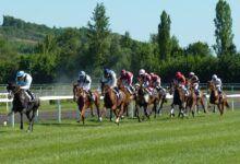 horse race 1665688 1280